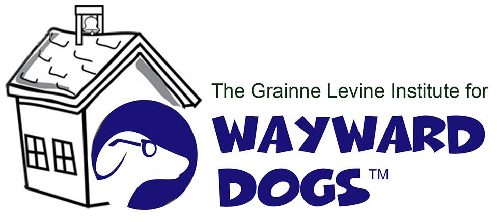 Wayward Dogs Training